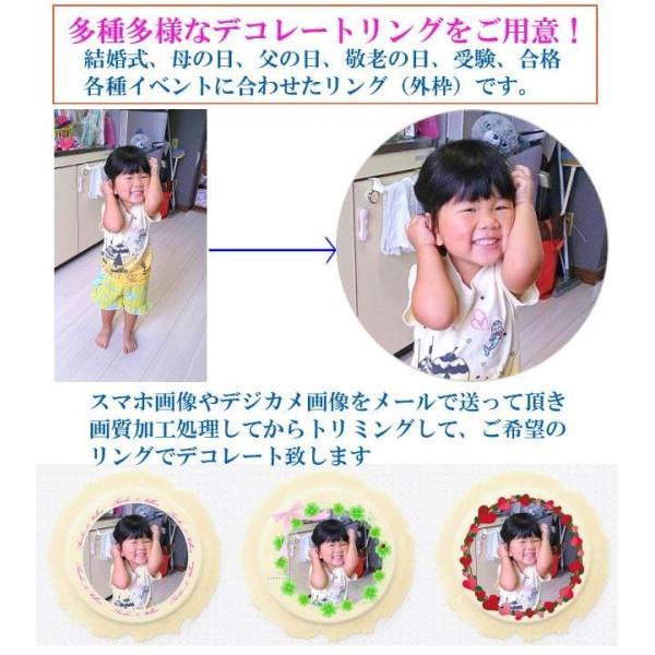 プリント南部大判せんべい22センチ印刷・かに味4枚セット(オリジナル オーダーメイド) uminekotayori 11