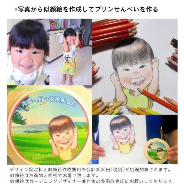 プリント南部大判せんべい22センチ印刷・かに味4枚セット(オリジナル オーダーメイド) uminekotayori 14