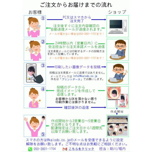 プリント南部大判せんべい22センチ印刷・かに味4枚セット(オリジナル オーダーメイド) uminekotayori 15