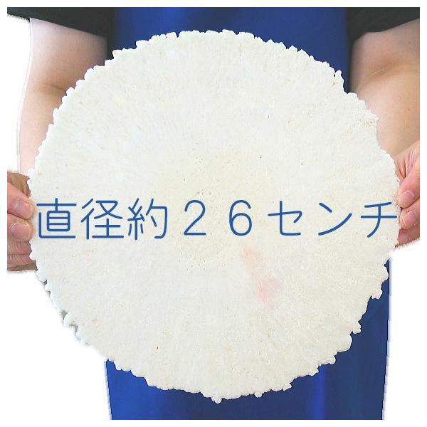 プリント南部大判せんべい22センチ印刷・かに味4枚セット(オリジナル オーダーメイド) uminekotayori 04