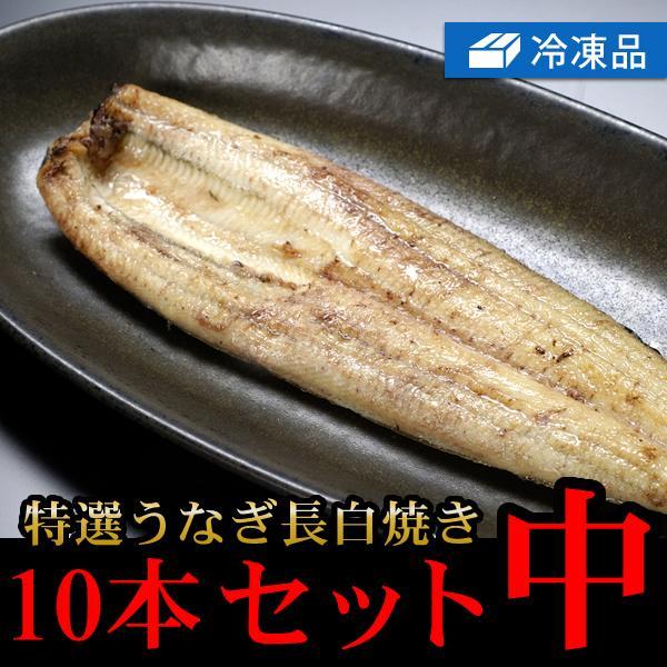 冷凍特選うなぎ長白焼き10本セット中