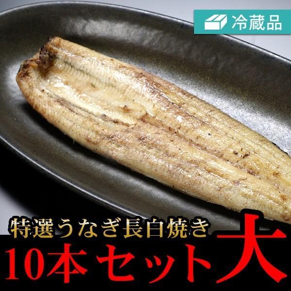 冷蔵特選うなぎ長白焼き10本セット大