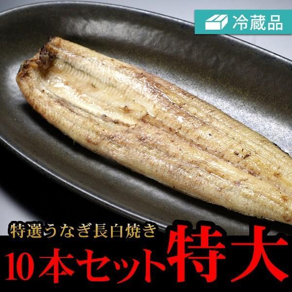 冷蔵特選うなぎ長白焼き10本セット特大