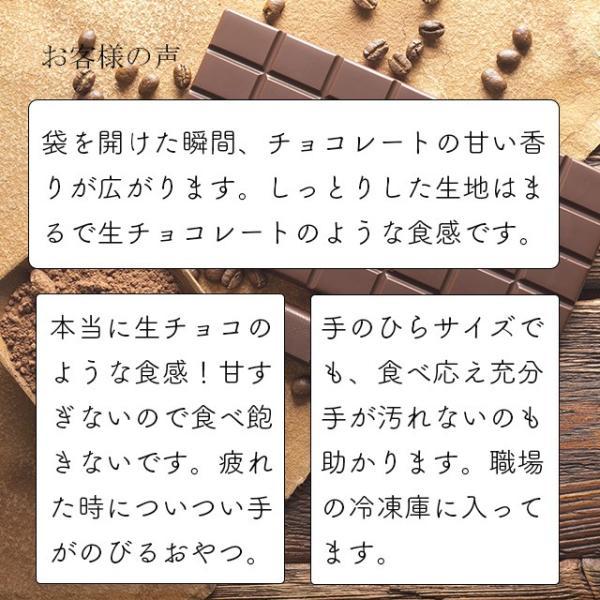 チョコレートケーキ スイーツ 大容量箱買い 送料無料 濃厚なガトーショコラ 20個入り 個包装|uncerise-cyokubai|06