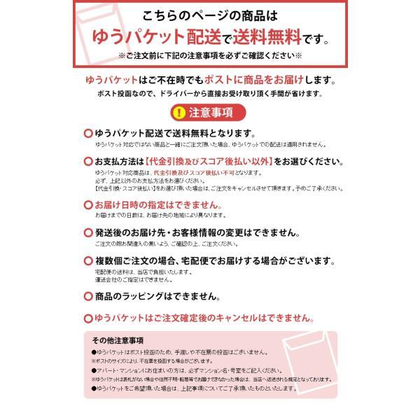 viv 替パッキン  59926 ワールド・クリエイト (D)【メール便】|unidy-y|02