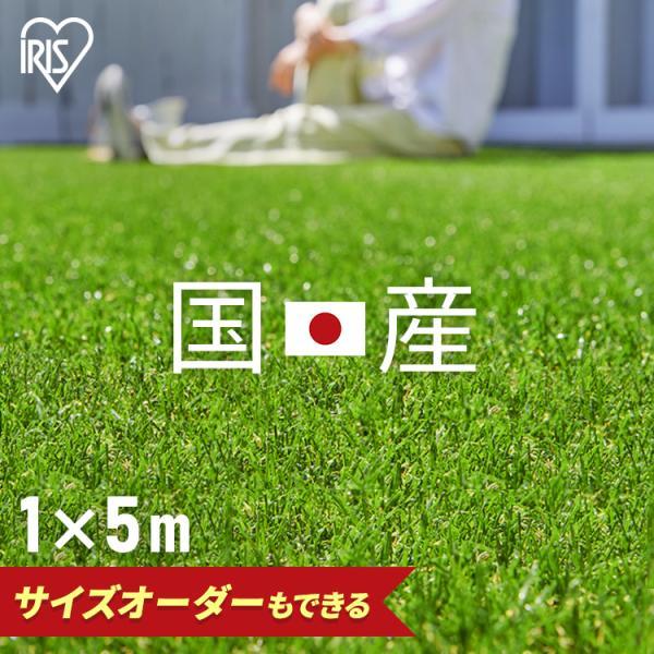 人工芝 ロール 幅1M 芝生 国産 リアル人工芝 1m×5m 芝丈30mm IP-3015 アイリスソーコー:予約品