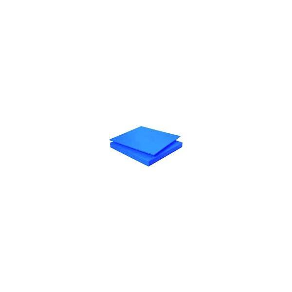(樹脂素材)タキロン スーパーキャストナイロン 40T×500×1000 青 TP-MCN-PLATE-550-40-500-1000