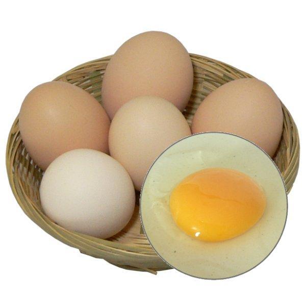 自然の味そのまんま 遺伝子組替飼料を全く使わないたまご(卵)[6ヶ]