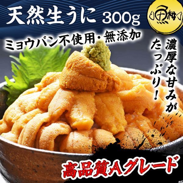 生ウニ チリ産 うに 刺身用 400g ミョウバン不使用 無添加 冷凍 生うに ウニ|uoko-ec