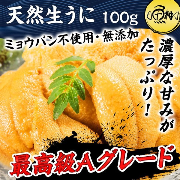 生うに チリ産 ウニ 最高級Aグレード 100g 刺身用 ミョウバン不使用 無添加 冷凍|uoko-ec