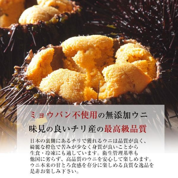 生うに チリ産 ウニ 最高級Aグレード 100g 刺身用 ミョウバン不使用 無添加 冷凍|uoko-ec|02