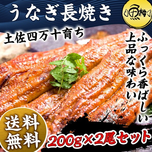 うなぎ お中元 ギフト 2021 国産最高級 四万十うなぎ 超特大サイズ蒲焼き長焼き約200g×2尾 お取り寄せ グルメ 鰻