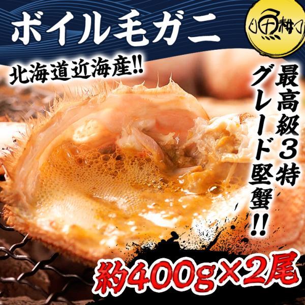 かに 毛蟹 北海道 オホーツク産一級品 ボイル 毛ガニ 最高級3特グレード堅蟹 350g×2尾 お中元 ギフト 2021