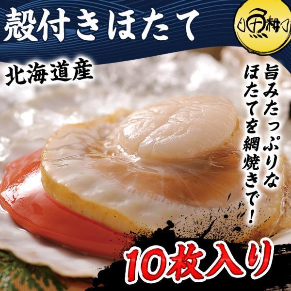 殻付きホタテ ほたて 北海道産 10枚入り 片貝