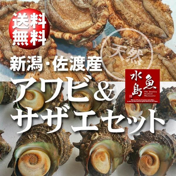 「あわび&さざえセット」 新潟産 天然 活アワビ100g×10個+活サザエ100g×10個 送料無料