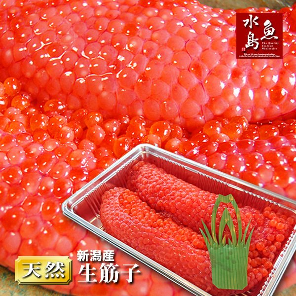 新潟産 生筋子(生いくら)季節限定「ずっしり大粒 生すじこ」 500g