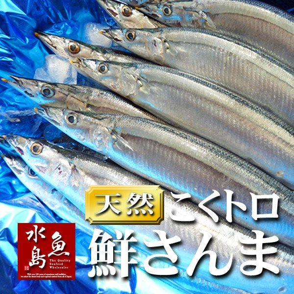 秋刀魚 こくトロ生サンマ 刺身用 特大2kg 14〜17尾