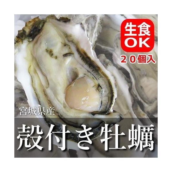 牡蠣 殻付き かき 生食可 宮城県産冷凍ハーフシェルオイスター 20個入り【他商品との同梱不可】|uoryu