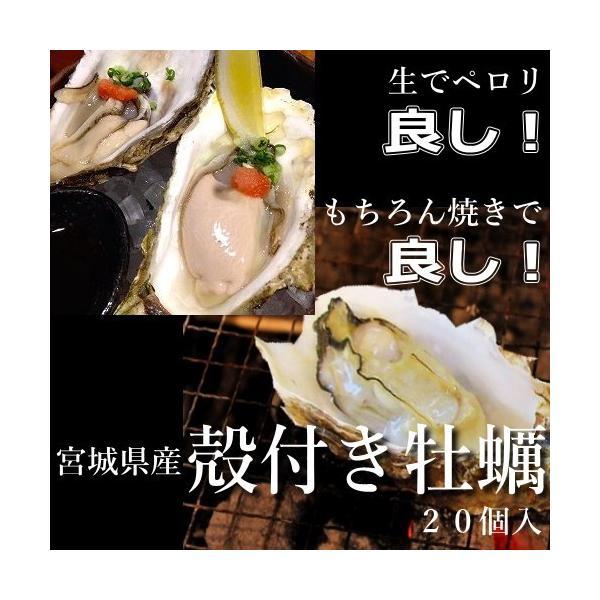 牡蠣 殻付き かき 生食可 宮城県産冷凍ハーフシェルオイスター 20個入り【他商品との同梱不可】|uoryu|05