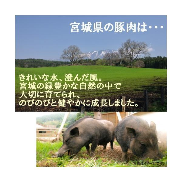高級西京漬けと豚味噌漬け ギフト 送料無料 吟醤漬「寒さわらと銀さけ」|uoryu|07