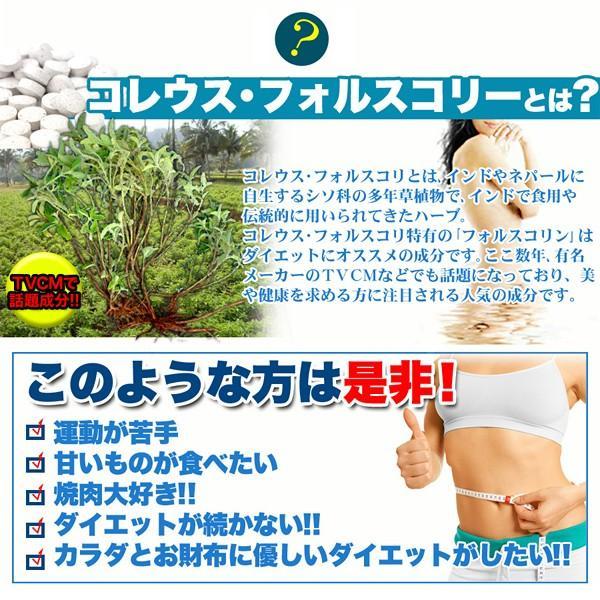 フォースコリー 国産 日本製 ダイエット サプリメント 安全 痩せ 効果 体脂肪 フォルスコリ 健康 4ヶ月 120日分 送料無料 ポイント消化|usagi-shop|03