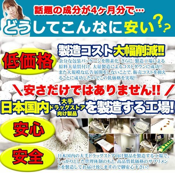 フォースコリー 国産 日本製 ダイエット サプリメント 安全 痩せ 効果 体脂肪 フォルスコリ 健康 4ヶ月 120日分 送料無料 ポイント消化|usagi-shop|05