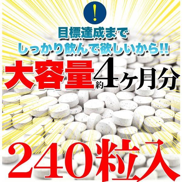 フォースコリー 国産 日本製 ダイエット サプリメント 安全 痩せ 効果 体脂肪 フォルスコリ 健康 4ヶ月 120日分 送料無料 ポイント消化|usagi-shop|06