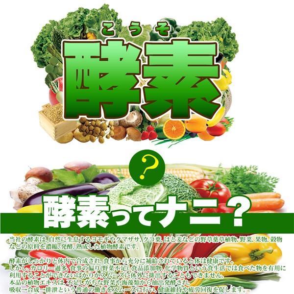 【プレミアム会員は本日P10倍】 酵素ダイエット サプリメント 国産 酵素サプリ 栄養バランス 健康 食生活 美容 日本製 送料無料 メール便 ポイント消化|usagi-shop|05