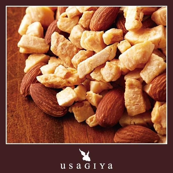 アーモンド ロースト ココナッツ 美容 健康 おやつ 練乳味 ビタミン ミネラル 中鎖脂肪酸 オメガ3脂肪酸 食物繊維 送料無料 軽減税率 消費税8%