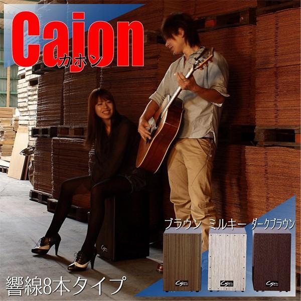 カホン 楽器 スナッピー付き 響線 8本 usagi-shop 02