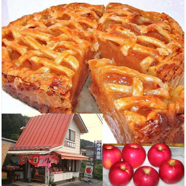 紅玉りんごのアップルパイ5号ギフト母の日バースデー誕生日記念日プレゼント人気アップルパイ昔ながらの甘酸っぱ〜いアップルパイ