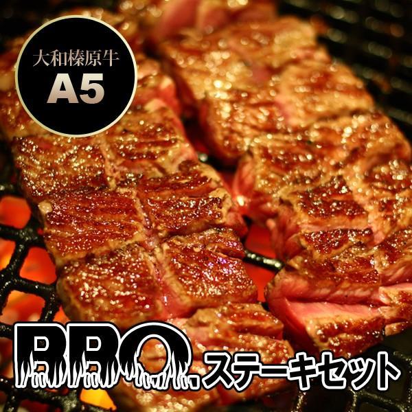 牛肉 黒毛和牛 A5 大和榛原牛 BBQ ステーキセット 600g (イチボステーキ:150g×2枚・サーロインステーキ:300g) 送料無料 BBQ