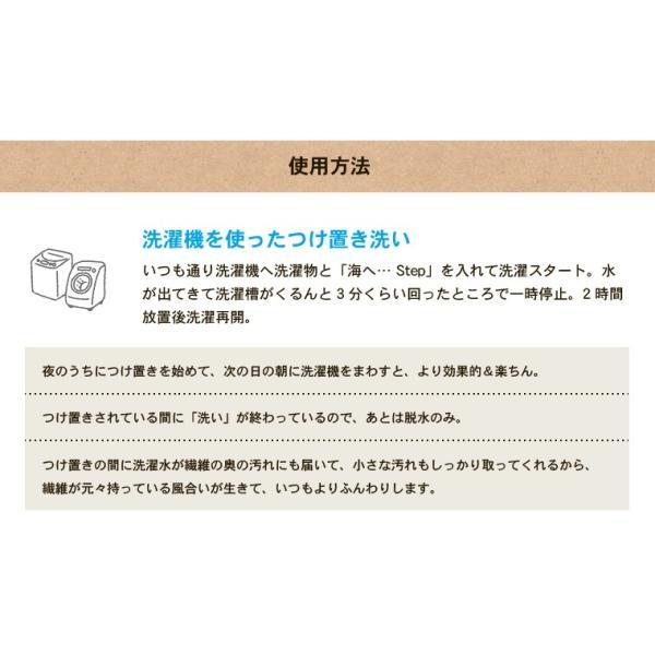 洗濯洗剤 海へ step 洗剤 詰め替え用パック450ml 3個セット utikire 09