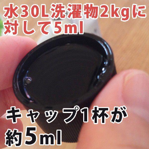 ゼブラ 洗剤 ブラック ZEVRA ゼブラ 洗濯洗剤 詰替えボトル 150ml (濃色衣料専用)|utikire|03