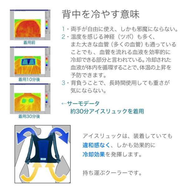 アイスリュック タテ型 [ 004 ] 縦20cm×横15.5cm 青色 赤色 黄色 保冷剤2点付き 繰り返し利用可 熱中症対策 暑さ対策 冷却 ヒンヤリグッズ|utsunomiyahonpo|05