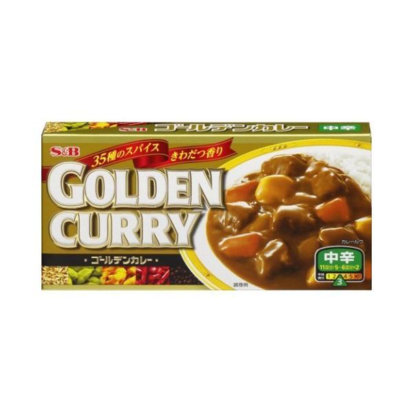 エスビー ゴールデンカレー198g ×10個セット/ エスビー ゴールデンカレー カレールー カレールウ