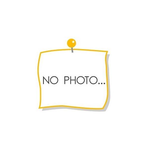 ARTA NSX コンセプト-GT スーパーGT500 2015 Rd.1 岡山 No8 (1/43 エブロ45272)|v-toys