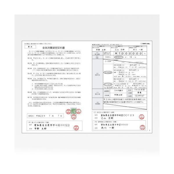 行政書士本舗 連帯保証人付お金の借用書用紙 記入ガイド付き 3枚複写 GLH1022|value-engineering|02
