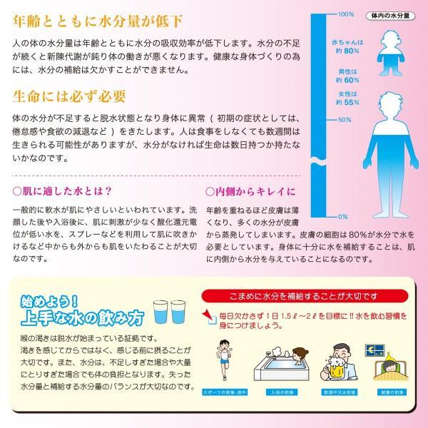 水素珪素天然水 VanaH  2L×12本入り 富士山 バナエイチ 水素水 水素 珪素 天然水|vanah-wwij|02