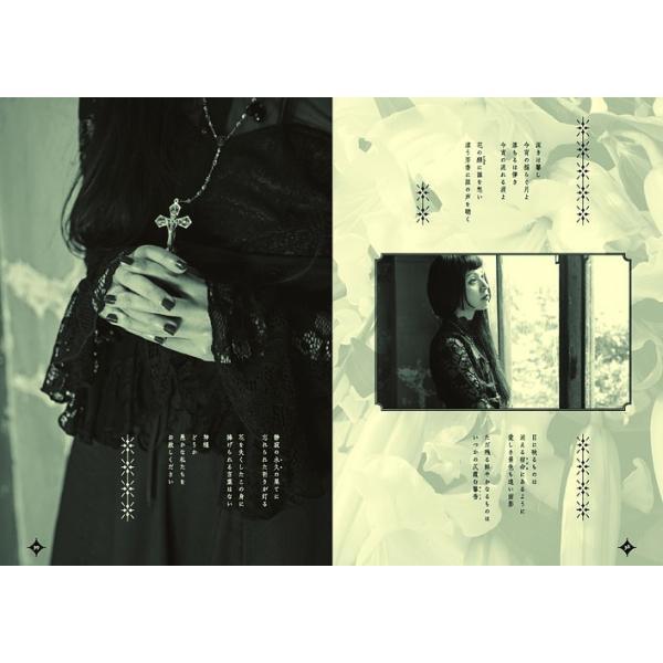 安蘭 画集『BAROQUE PEARL』 ★サイン入り★ vanilla-gallery 06