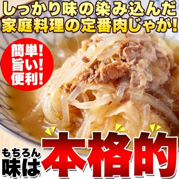 ポイント消化 ゴロっとじゃがいも♪かつお風味の優しい味付け!!味染み肉じゃが600g(200g×3袋)  送料無料 セール|vape-land|02