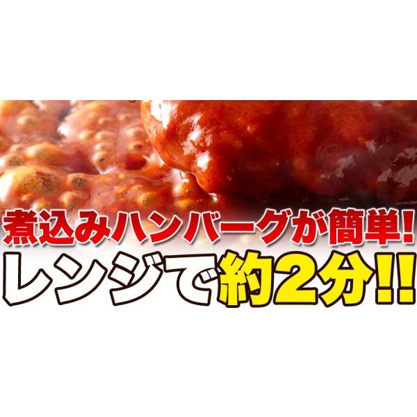 ポイント消化 野菜入り デミグラス 煮込みハンバーグ 約200g×3袋  送料無料 セール vape-land 07