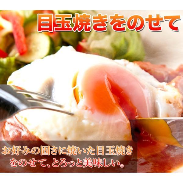 ポイント消化 野菜入り デミグラス 煮込みハンバーグ 約200g×3袋  送料無料 セール vape-land 09