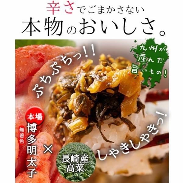高菜明太 たっぷり 大容量 業務用 400g ポイント消化 送料無料 ご飯のお供 セール|vape-land|02