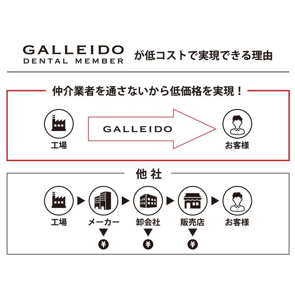 GALLEIDO DENTAL 電動歯ブラシ(音波式高振動 静音設計 USB充電タイプ 交換歯ブラシ4本付き) vape-online 04