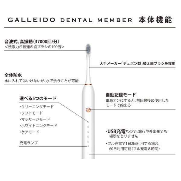 GALLEIDO DENTAL 電動歯ブラシ(音波式高振動 静音設計 USB充電タイプ 交換歯ブラシ4本付き) vape-online 05