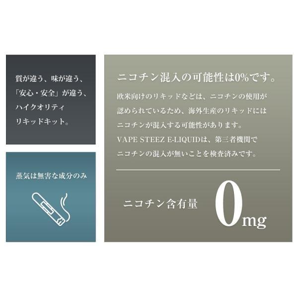電子タバコ リキッド VAPE STEEZ オリジナルフレーバー ストロングミント 送料無料|vapesteez|02