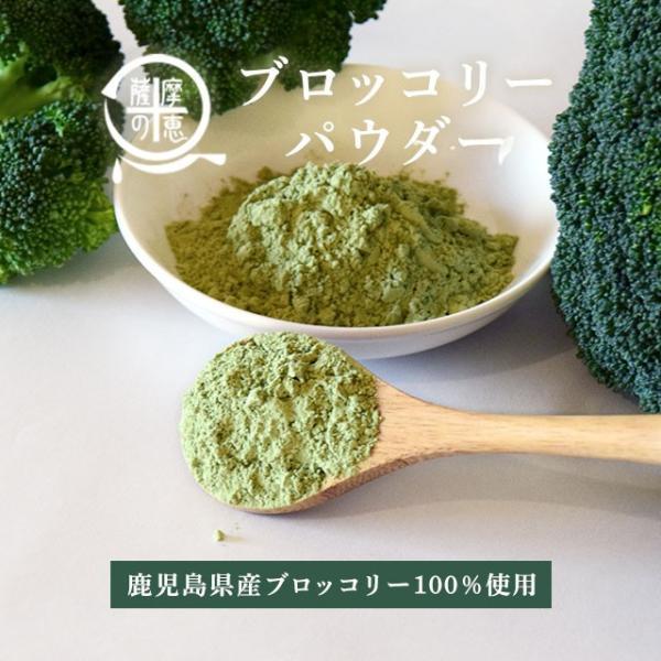 野菜パウダー ブロッコリー 鹿児島県産ブロッコリー使用 40g ポイント消化 得トクセール 食品 お試し オープン記念|vegeko