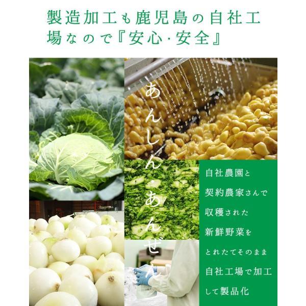 だし 出汁 野菜だし 野菜出汁 だしパック 野菜 国産野菜 九州野菜 味噌汁 鍋料理 パスタ 野菜出汁35g7g10パック|vegeko|12