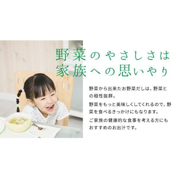 だし 出汁 野菜だし 野菜出汁 だしパック 野菜 国産野菜 九州野菜 味噌汁 鍋料理 パスタ 野菜出汁35g7g10パック|vegeko|13